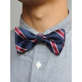 Bow Tie (Blue/Red Strap)
